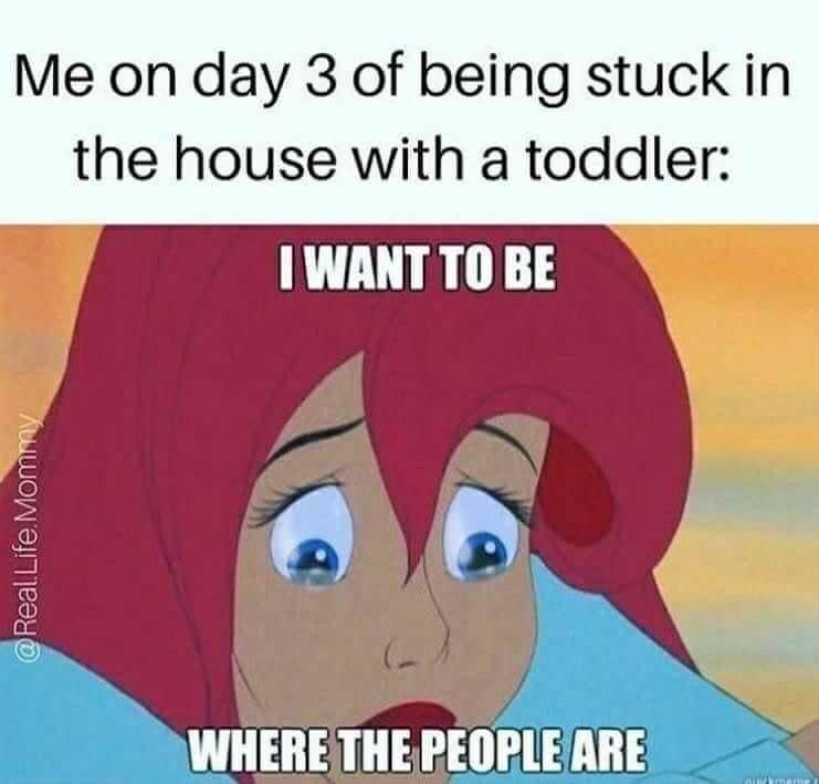Little Mermaid COVID-19 meme